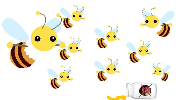 animal_bee1
