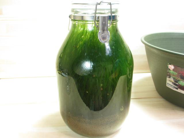 bottle_aqua02