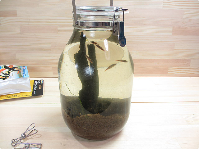 bottle_aqua12