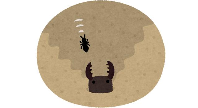 社会に殺される蟻